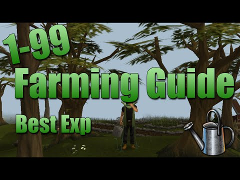 RuneScape 3 | Ultimate 1-99 Farming Guide 2015! - Best Exp/Trip