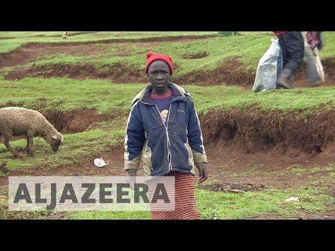 Kenyans fear post-election violence