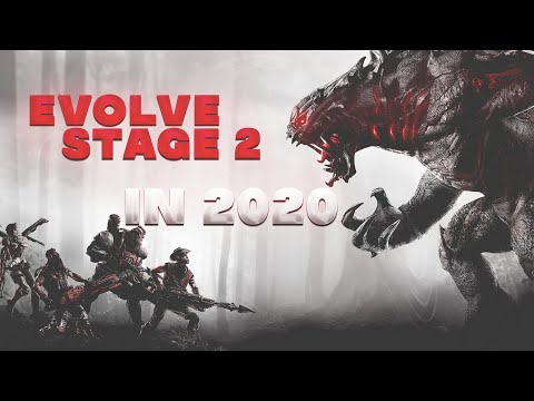 Evolve Stage 2 In 2020