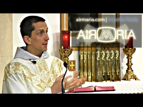 Give Self to Gain Freedom - Sep 04 - Homily - Fr Matthias