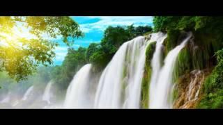 видео Фотообои «Природа» на стену