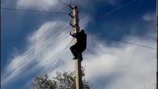 Электрик от бога