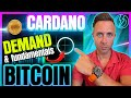 BITCOIN & CARDANO STILL IN BULL MARKET?! (Fundamentals Can Explode Price!)