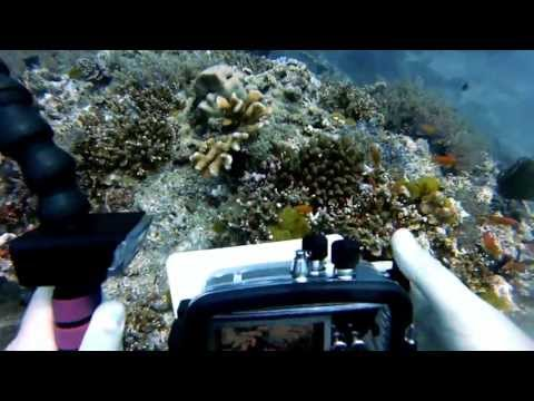 Thailand Diving 02 - Andaman Sea - West of Eden