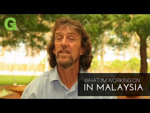 Malaysia Trip:  What I