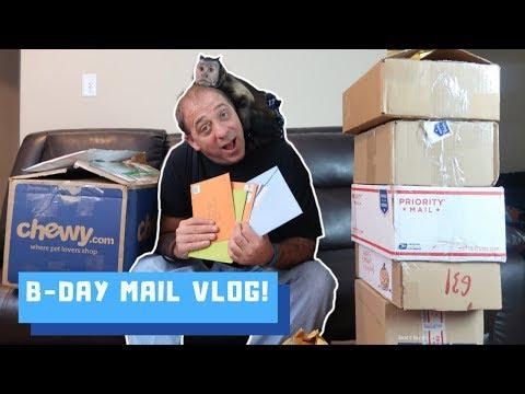Monkey LOVES Birthday Fan Mail!