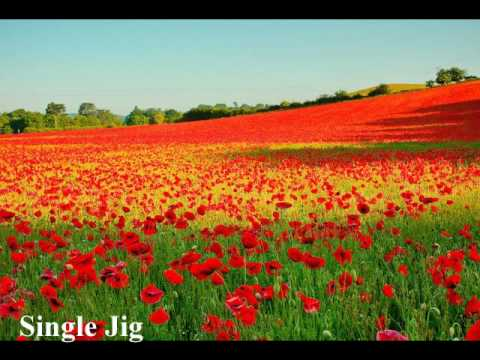 Single Jig - Irish dance music