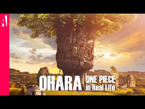 ONE PIECE - Ohara - In Real Life - Live Action