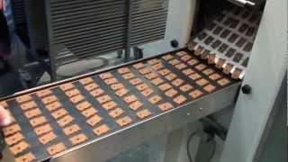Машина для производства печенья - SHELDEM