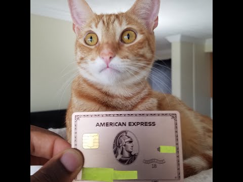 Why AMEX Cancelled My Amex Gold Card??? Amex Financial Review