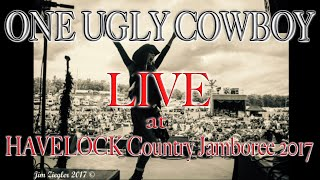 Mama Told Me Not To Come (Three Dog Night cover) by One Ugly Cowboy