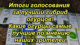 "Огурец №1 по рейтингу зрителей канала ""Сад, огород, своими руками!"""