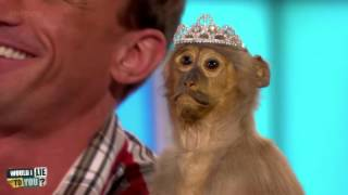 Christian Jessen's stuffed monkey, Elsie - Would I Lie to You?