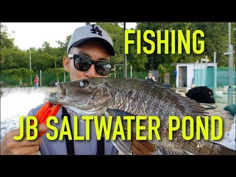 Saltwater Pond Fishing Catch N Eat 2! (20 Minutes Away From Singapore) Johor Bahru