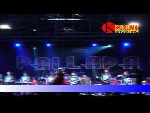Awan Kelabu - Tasya Rosmala - OM.New Pallapa Live Kedong Kendo 2015