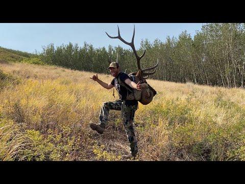 Nevada Bull Elk Muzzleloader Rut Action!