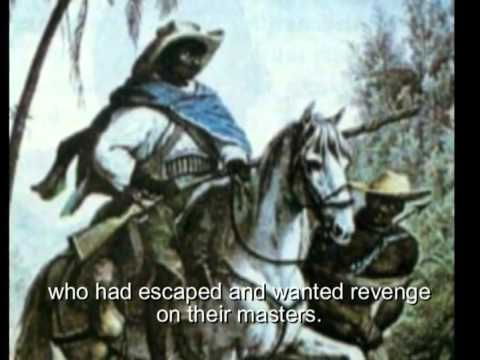 CAPOEIRA THE DANCE OF FREEDOM A documentary film
