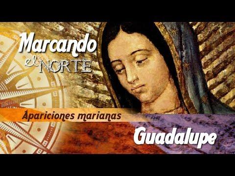 Marcando el Norte: Guadalupe 6/9