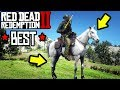 BEST HORSE IN RED DEAD REDEMPTION 2 LOCATION HOW TO!