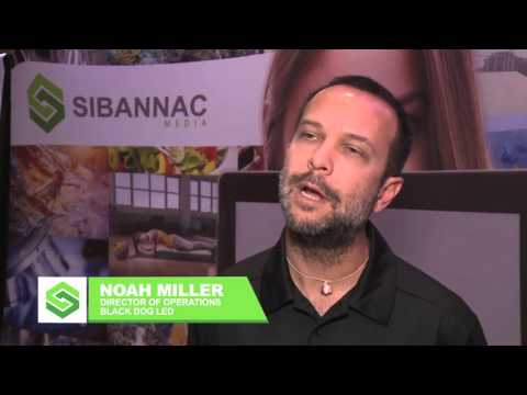 Noah Miller Black Dog LED for Sibannac Index