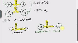 Functional Groups: Carboxylic Acids and Esters