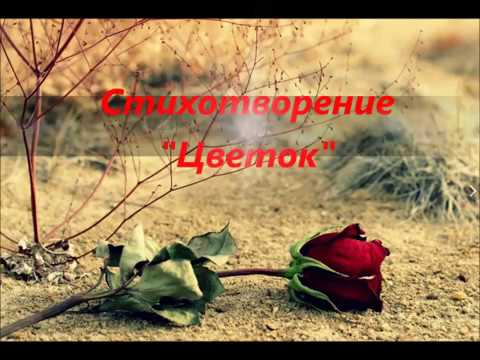 Изображение предпросмотра прочтения – НэркэсТухфатуллина читает произведение «Цветок» И.С.Тургенева