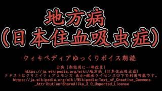 ≪ゆっくりボイス朗読≫ 日本住血吸虫症 地方病 検索動画 15