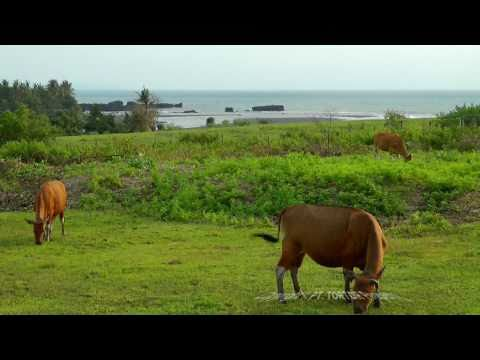 Bali land for sale Nyanyi beach elevated small plot with ocean views sunset