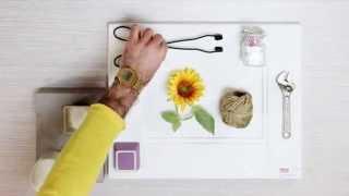 Scegliere il colore della cucina | Mood provenzale