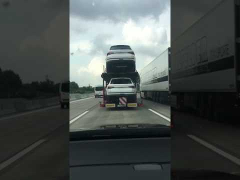 Kodiaq Transporter