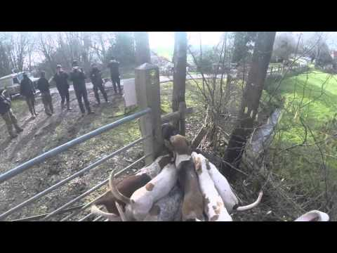 Hunt Sabs being obstructive and blocking gates.