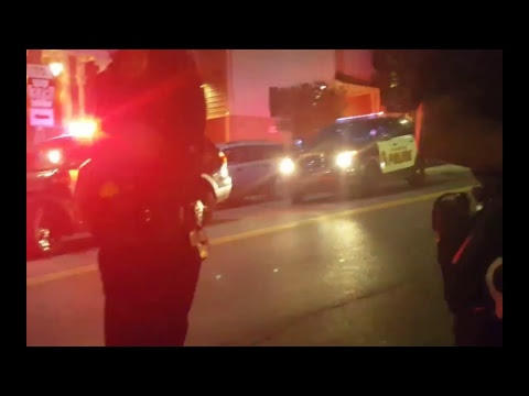 LIVE Too Many Passengers Traffic Stop Bethlehem PA (Musikfest) The Freedom Paradox