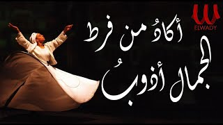 Akad Mn (With lyrics) |  - اكاد من فرط الجمال اذوب الأصليه بالكلمات