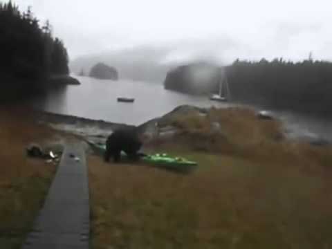 Woman thanks bear for not eating her boat then pepper sprays him. Bear thanks her and eats the boat.