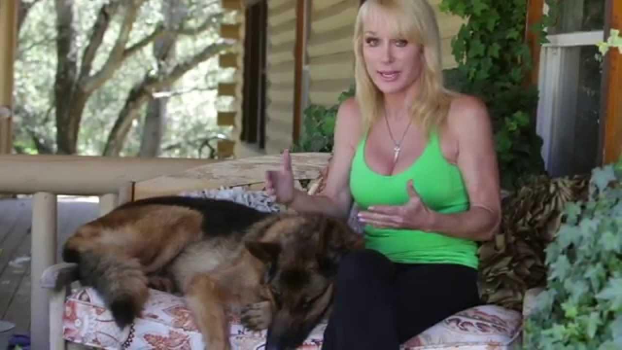 Find A Dog Trainer