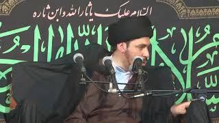 إذا خرج الإمام المهدي عجل الله فرجه نزل العذاب على الكافرين من أمة النبي محمد صل - السيد منير الخباز