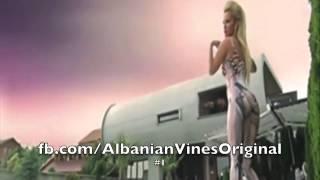 Zogu ma i mire prej krejtve.. (Albanian Vines)