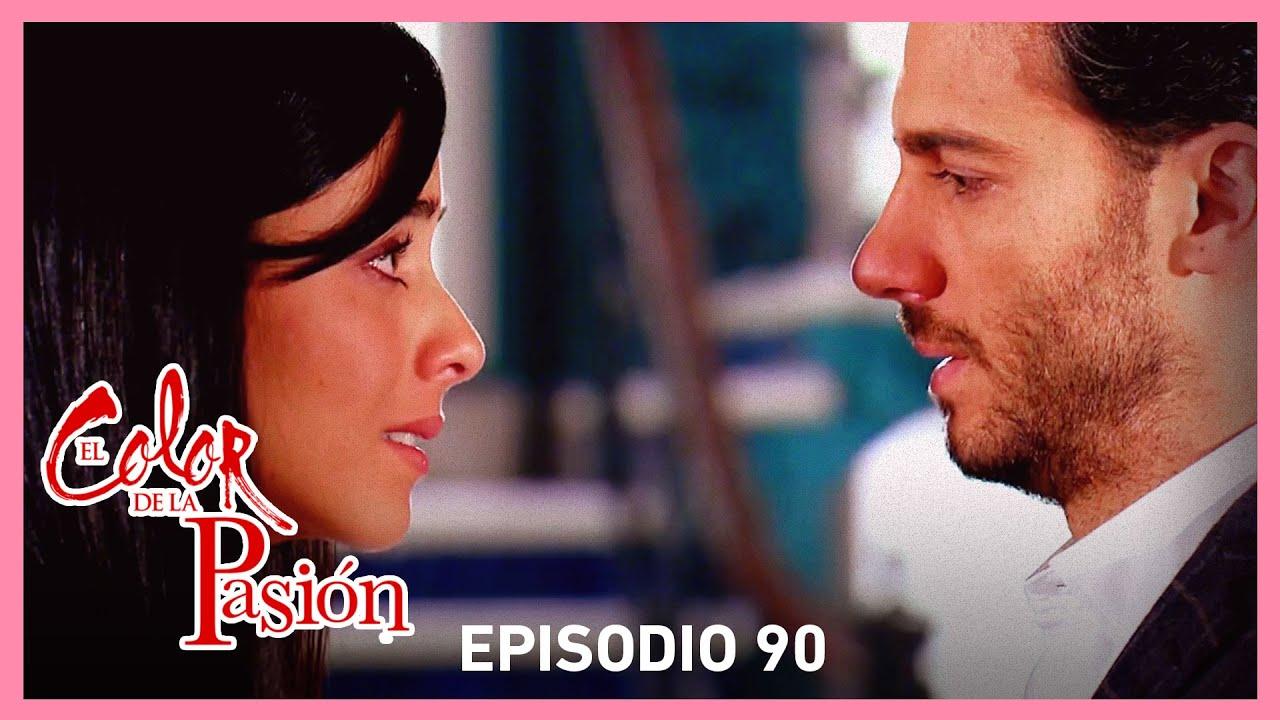 Download El color de la pasión: Marcelo decide renunciar a Lucía | C- 90 | Tlnovelas