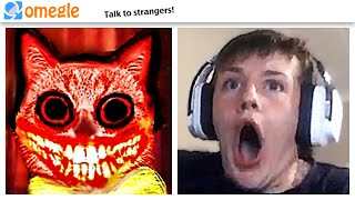 cute cat JUMPSCARE TROLLING on OMEGLE