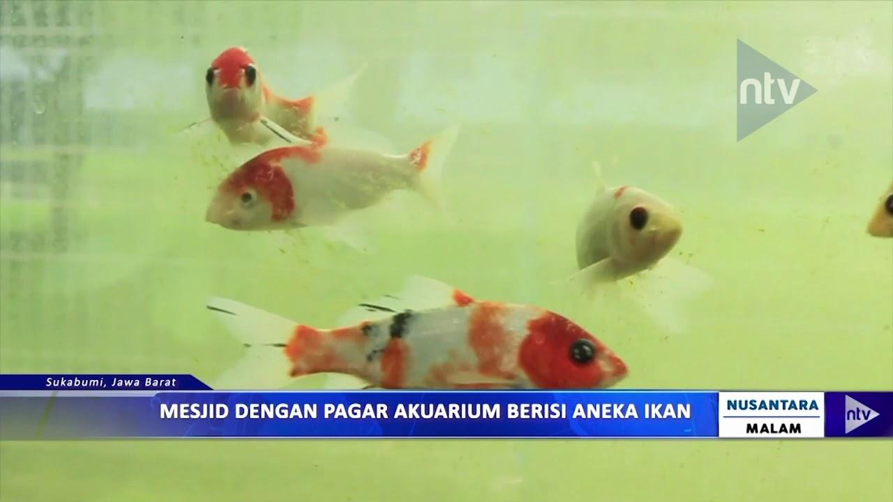 Mesjid Dengan Pagar Aquarium Berisi Aneka Ikan