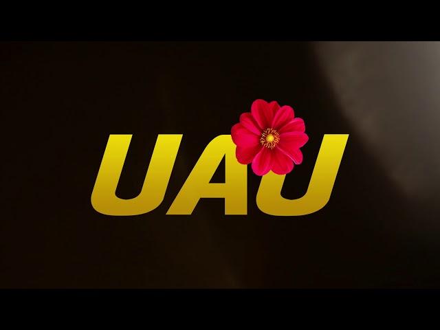 Deejay Telio & Deedz B - UAU (Áudio Oficial)