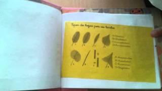 Mi primer Herbario en Educación Infantil