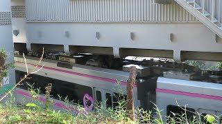 湘南モノレール・車両の上の部分(Shonan Monorail)