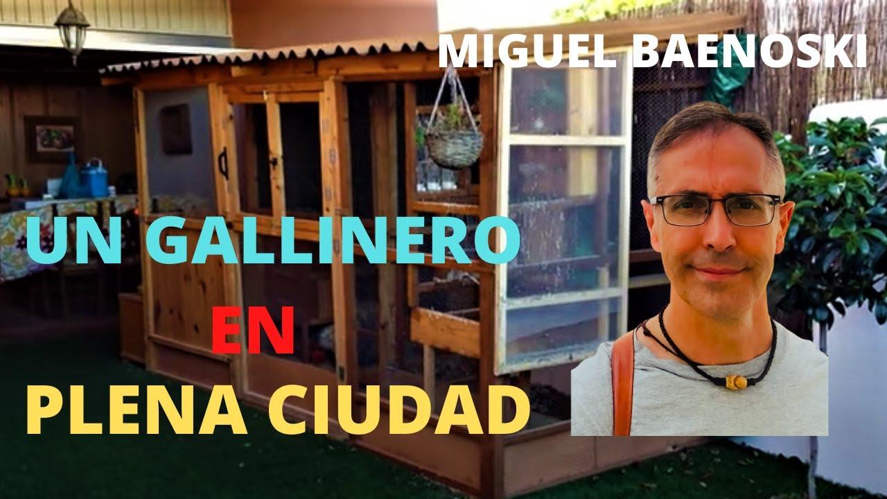 Un gallinero en plena ciudad youtube for Gallinero jardin