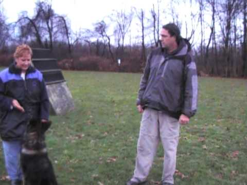 Stand Training-Mike Ellis