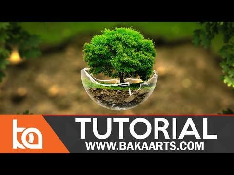 Intermediate PhotoManipulation Tutorial | The Tree Sphere