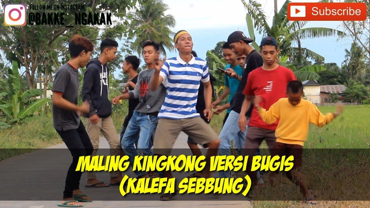 "Cover lagu ""MALING KINGKONG"" versi bugis ""KALEFA SEBBUNG""  Ngakak 🤣🤣"