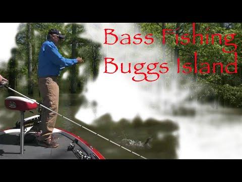 Fishing Buggs Island.