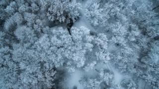 Mi Qani Hogi   Dzmer (Audio)  //  Մի Քանի Հոգի   Ձմեռ