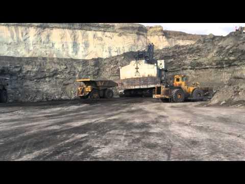 Arch Coal #1